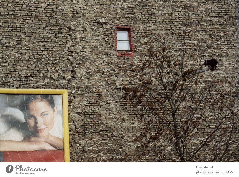 Woman Tree Berlin Wall (building) Window Architecture Advertising Brick Brick wall