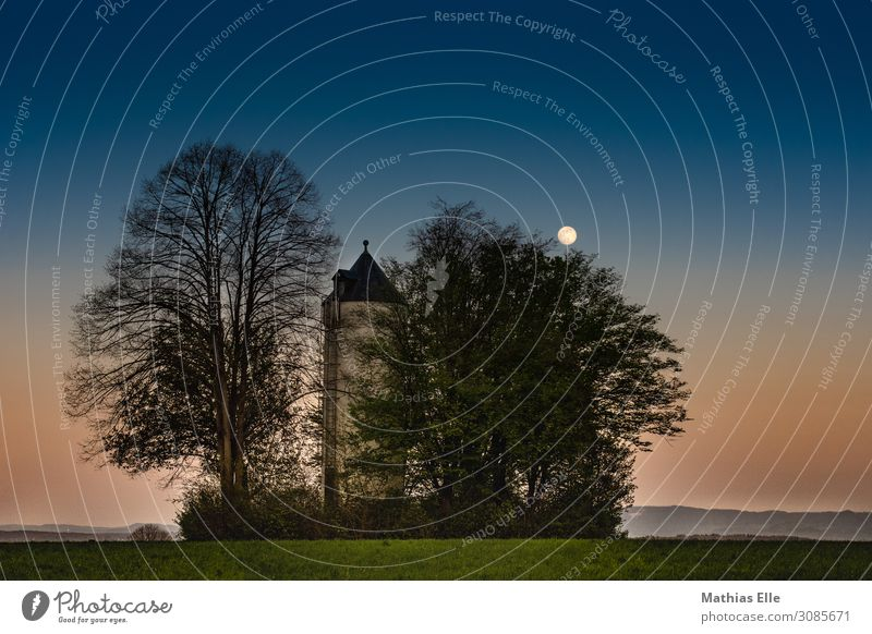 Water tower in the evening Living or residing House (Residential Structure) Landscape Plant Sky Night sky Horizon Full  moon Spring Beautiful weather Tree