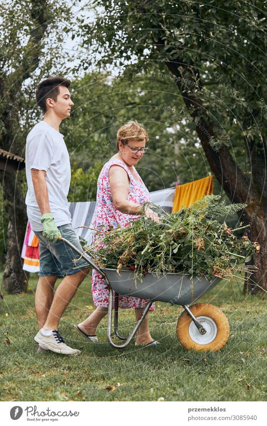 Grandchildren helping grandmother at a home garden Woman Human being Youth (Young adults) Man Old Summer Plant Green Young man Flower 18 - 30 years Lifestyle