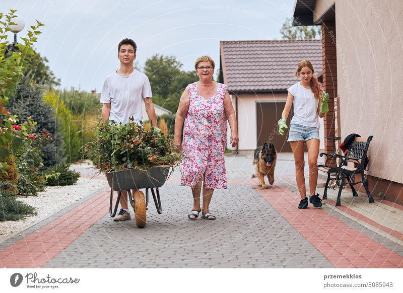 Grandchildren helping grandmother at a home garden Woman Child Human being Youth (Young adults) Man Old Young woman Summer Plant Green Young man Flower Girl