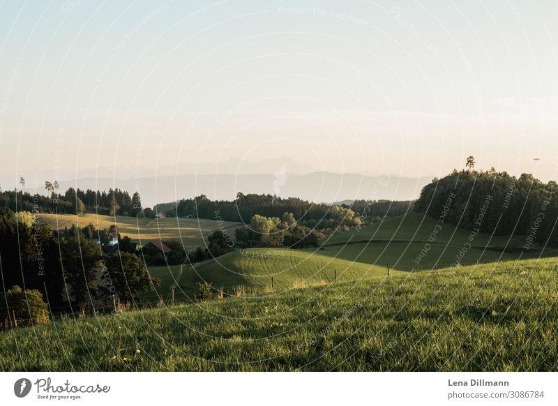 Allgäu Evening mood allgau Alps outlook Meadow Field meadows wals Southern Germany Summer Deserted Nature hillock Swabia swab weställgau evening mood Empty Sky