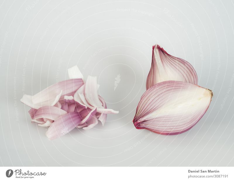 Red onion isolated on white background. Vegetable Fruit Herbs and spices Nutrition Vegetarian diet Diet Plant Collection Glittering Fresh Good Natural White