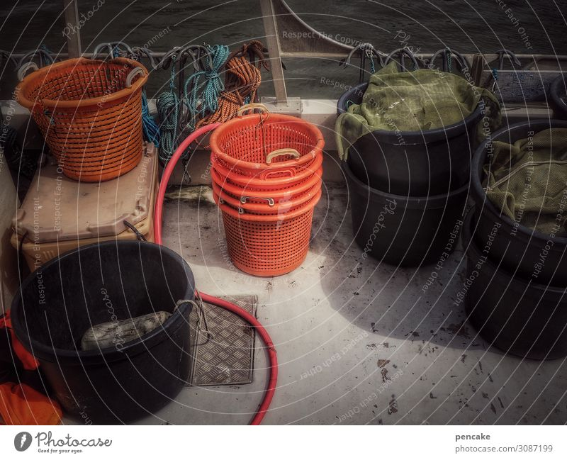everything in the bucket Coast North Sea Navigation Fishing boat Authentic Expectation Complex Fishery Basket Bucket Containers and vessels Deck Denmark