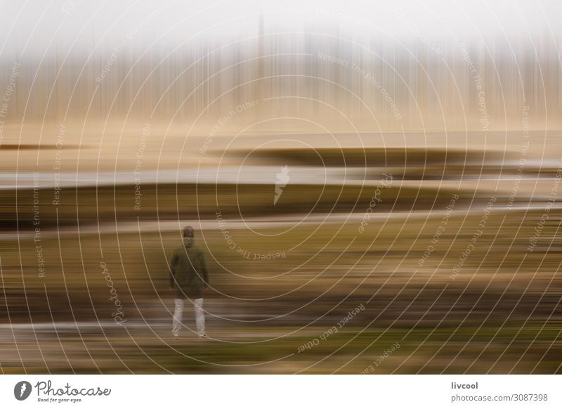 man observing the winter dream landscape in a marsh, france Human being Sky Nature Man Green Landscape Clouds Leaf Calm Winter Lifestyle Adults Natural Emotions