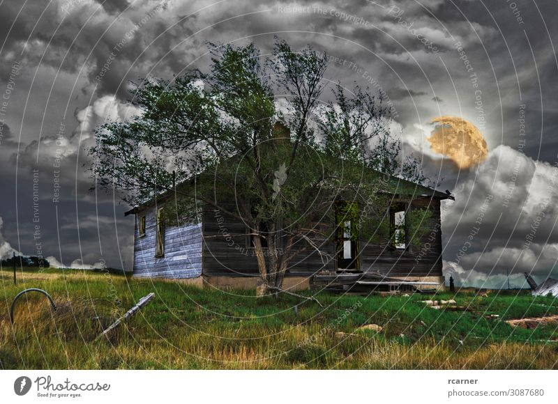 Abandoned house on a scary night Print media Elements Sky Storm clouds Night sky Full  moon Thunder and lightning Tree Field Outskirts Deserted Hut Door Poverty