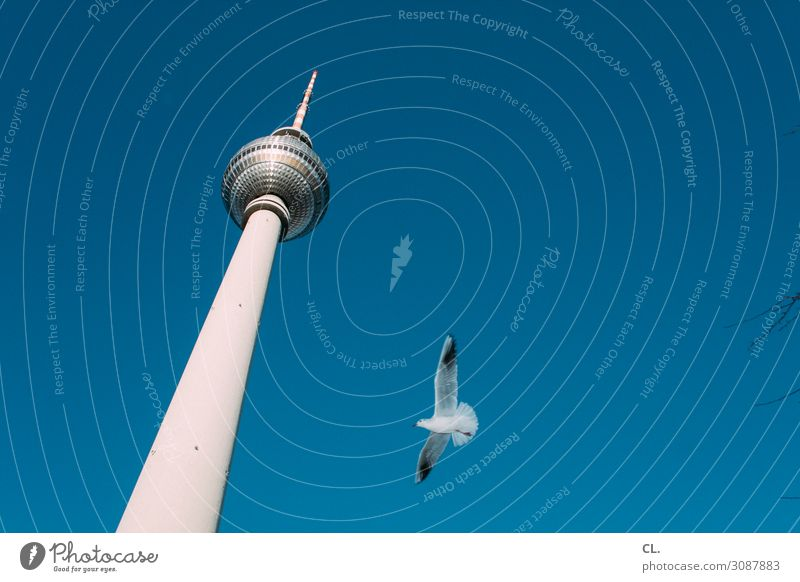 home flight Vacation & Travel Tourism Trip City trip Cloudless sky Beautiful weather Berlin Capital city Downtown Deserted Tower Tourist Attraction Landmark