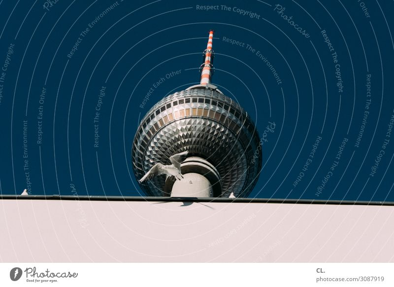 trip Vacation & Travel Tourism Trip City trip Cloudless sky Beautiful weather Berlin Downtown Berlin Berlin TV Tower Capital city Deserted Manmade structures