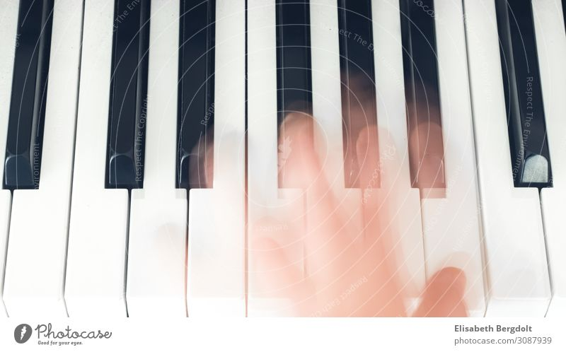 Hand on piano Leisure and hobbies Art Music Piano Movement Emotions Moody Keyboard Make music Play piano Colour photo Subdued colour Interior shot Day Light