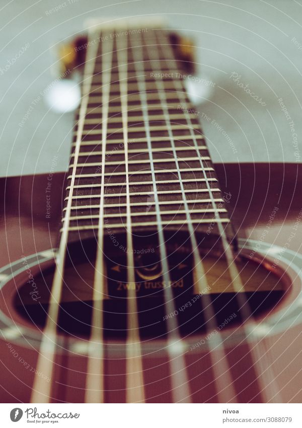 Fingerboard of a guitar Body Music Musician Stage Singer Band Guitar Fretboard Musical instrument string Wood Line Utilize Study Sit Playing Stand Hip & trendy