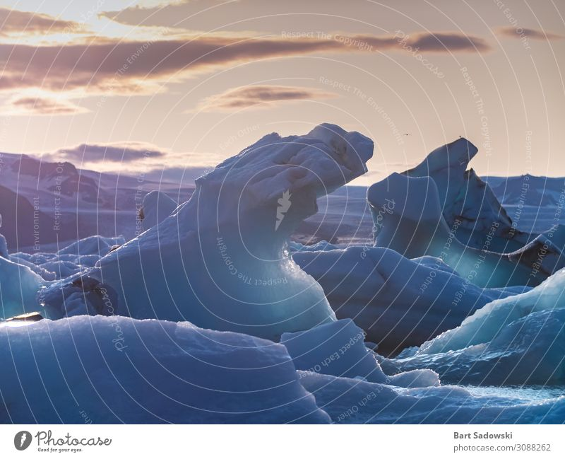Icebergs at Sunset Nature Beautiful Water Landscape Ocean Environment Fresh Climate Break Clean Protection Mysterious Frost Bay Frozen