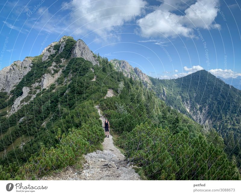 comb migration Mountain Hiking 1 Human being Landscape Sky Summer Beautiful weather Chalk alps Peak Gigantic Infinity Tall Above Blue Gray Green Joy