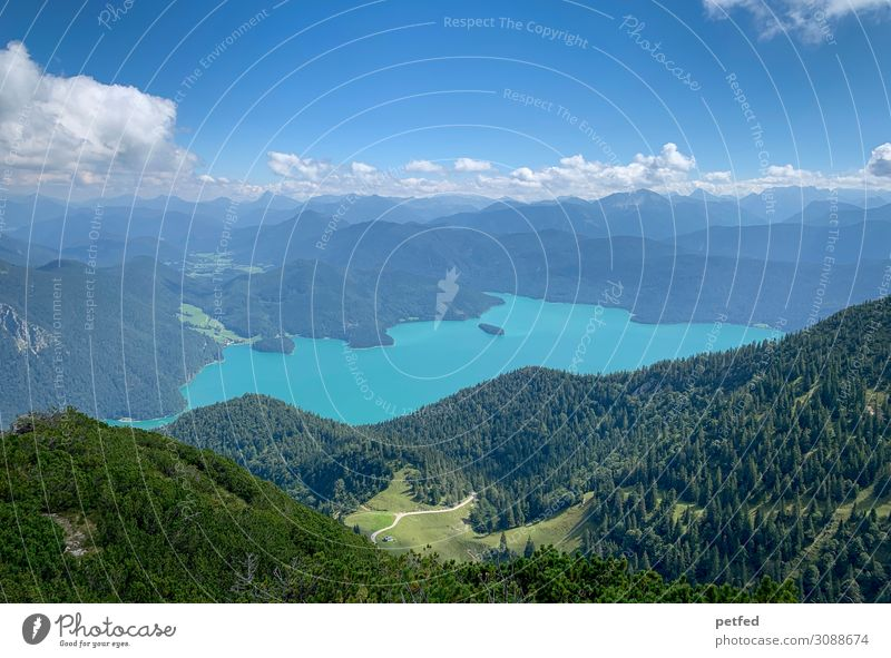 far vision Landscape Water Sky Clouds Summer Forest Mountain Alps Peak Lake Lake Walchen Far-off places Gigantic Large Infinity Tall Blue Green White Moody