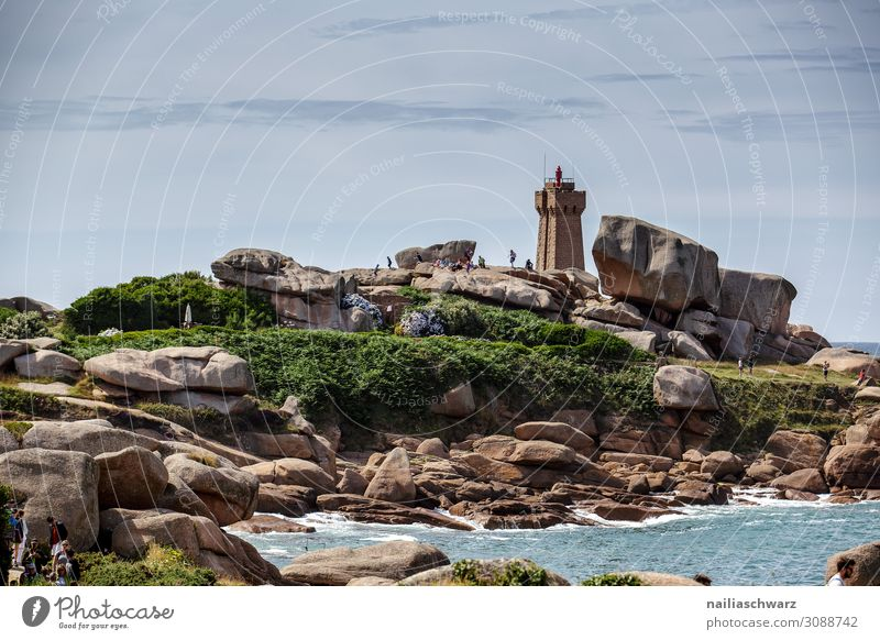 Lighthouse, Pink Granite Coast Lifestyle Vacation & Travel Tourism Trip Adventure Far-off places Summer Summer vacation Beach Environment Nature Landscape Ivy