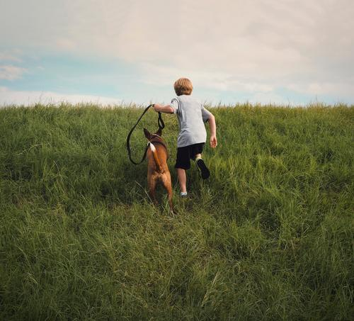 Boy and His Dog Running Up a Hill Boy (child) Child Youth (Young adults) Young man Youth culture Animal Pet Grass Runner Joy Clouds Day Happiness Infancy