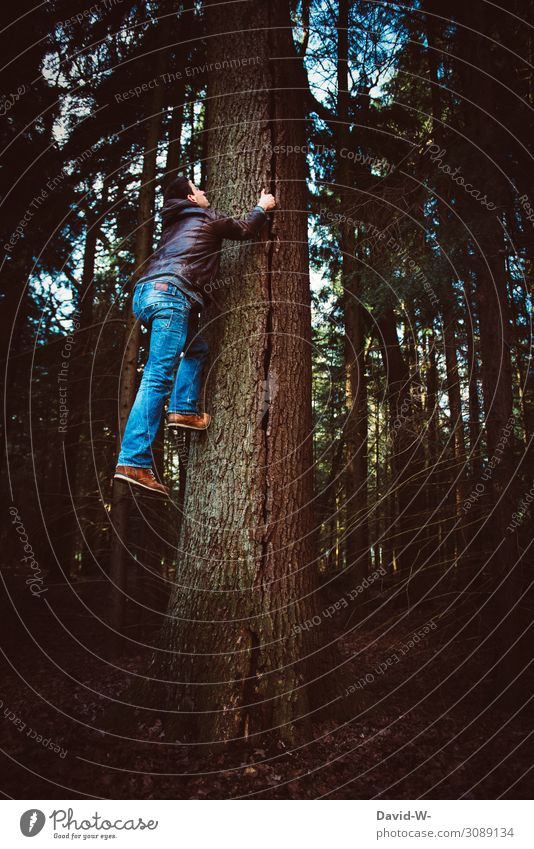 Man climbing tree Climbing monkey climber Tall Force willpower strength supermajor superpower creatively spiderman To hold on Upward Nature Manly Creativity Pro