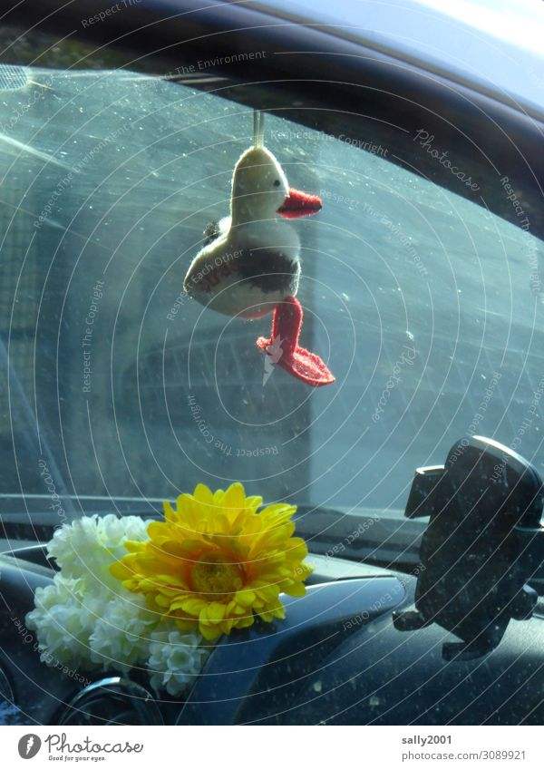carpooling Transport Passenger traffic Motoring Car Driving Hang Happy Identity Protection Duck birds Cuddly toy Good luck charm Flower Artificial Navigation