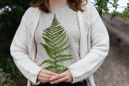 fern Nature Fern Plant To hold on Hand Forest Green Woman Summer Autumn Exterior shot guard sb./sth.