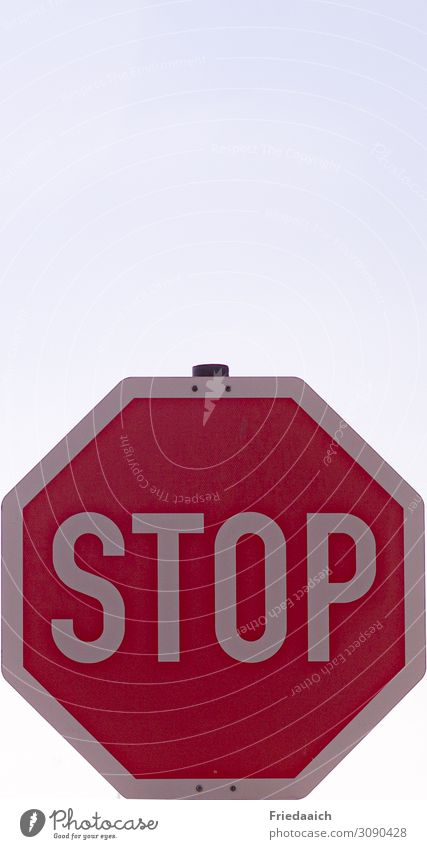 STOP Vacation & Travel Tourism Trip City trip Sign Signs and labeling Signage Warning sign Road sign Driving To hold on Looking Stand Wait Sharp-edged Above