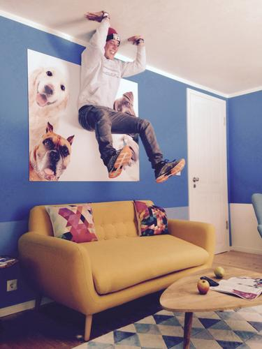Upside down. Upside down. Lifestyle Joy Living or residing Flat (apartment) Furniture Sofa Armchair Room Living room Human being Masculine Boy (child) Young man