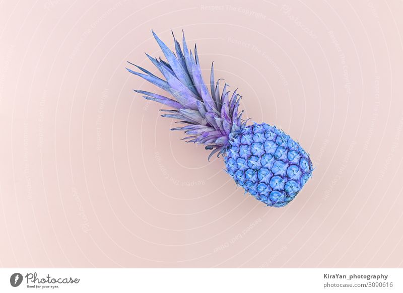 Fresh pineapple toned in trendy neon blue duo tone colors on pink background abstract ananas banner beautiful children closeup colorful concept copy space