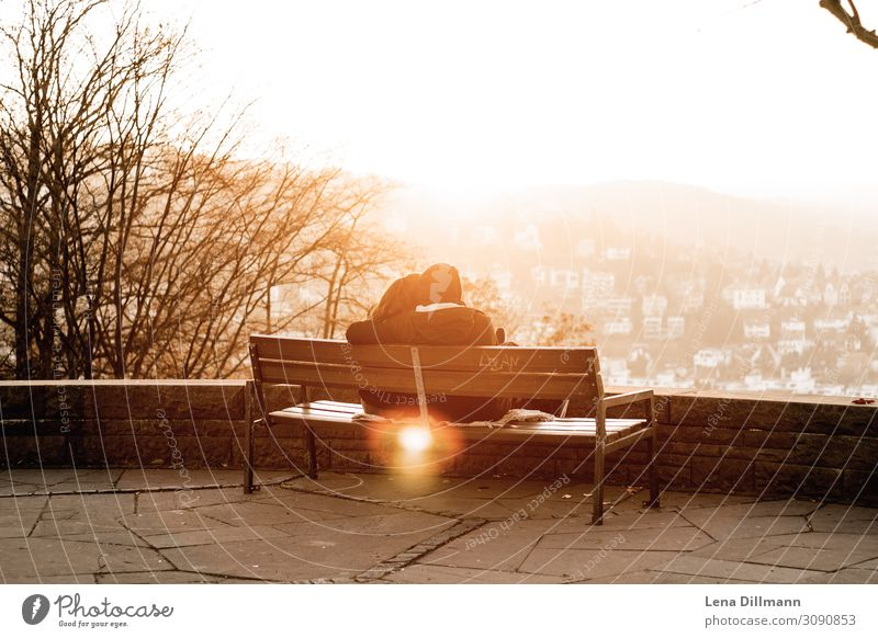 Couple at sunset in Stuttgart Sunset evening hour Evening Light evening light golden hour couple people Bench lens flare outlook Autumn Spring Love Sit