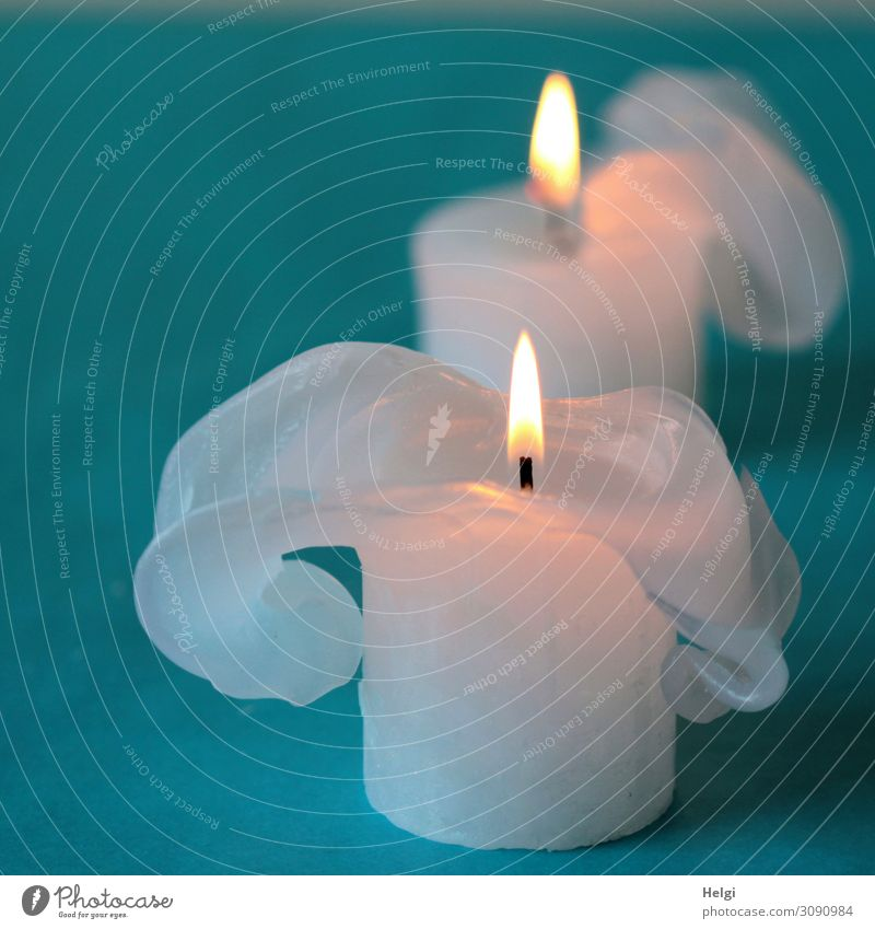 two white burning candles with bizarre wax formations stand on a turquoise background Feasts & Celebrations Christmas & Advent shoulder stand Sign Illuminate