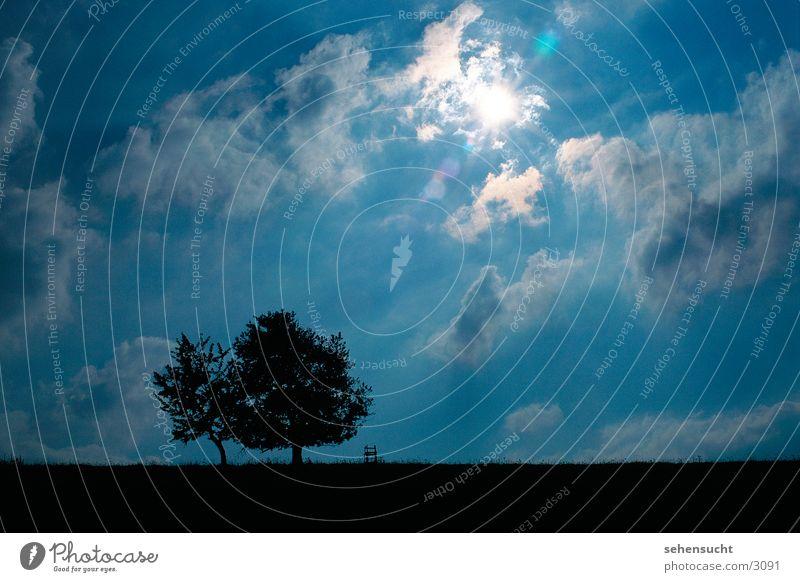 Sky Tree Sun Blue Black Clouds Landscape Hunting Blind Lens flare Patch of light
