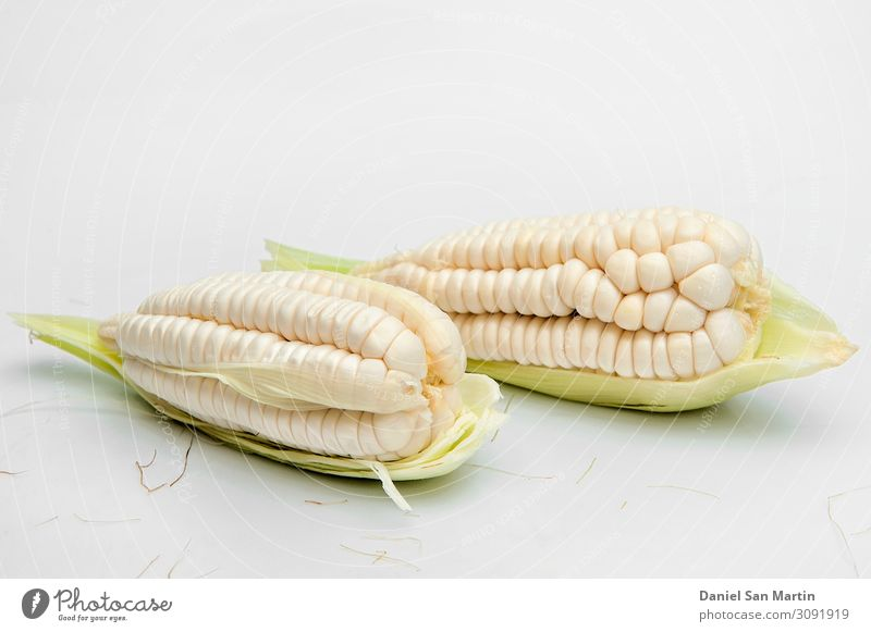 choclo, giant white corn. On a white background Green White Leaf Life Yellow Nutrition Fresh Gold Vegetable Farm Diet Still Life Kernels & Pits & Stones