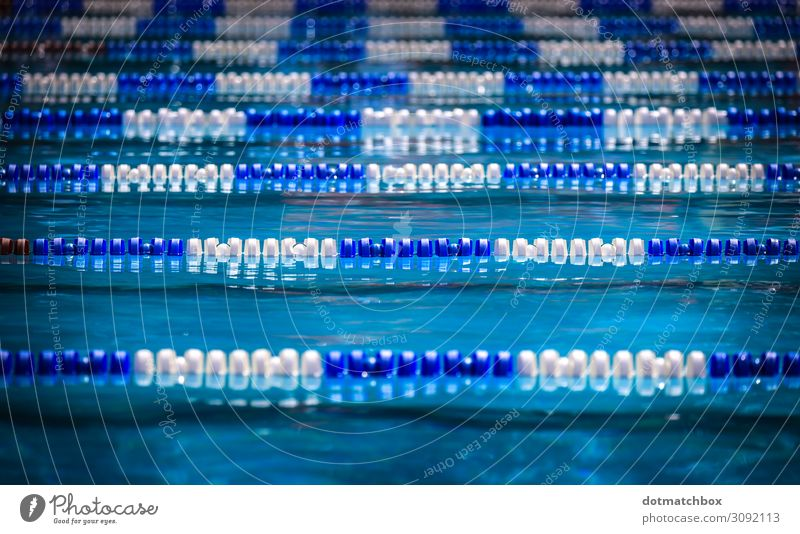 Liquid lines Leisure and hobbies Vacation & Travel Sports Aquatics Swimming & Bathing Sporting Complex Swimming pool Water Summer Beautiful weather Deserted Wet
