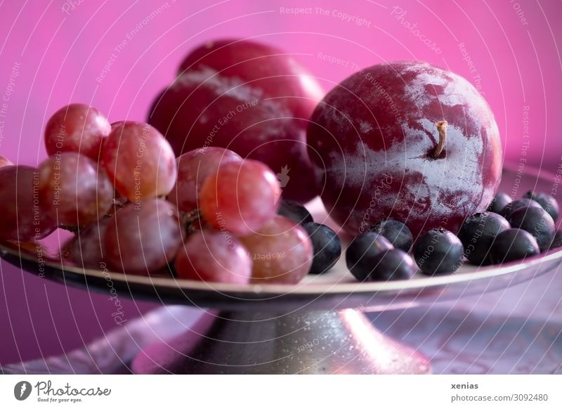 Fruit bowl in purple Food Plum Bunch of grapes Blueberry Organic produce Vegetarian diet Diet Bowl Living or residing Interior design Fresh Healthy Delicious