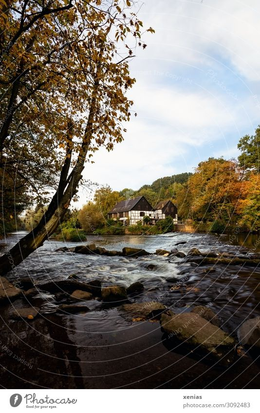 Wipperkotten in autumn rocker cottages House (Residential Structure) Machinery Nature Landscape Autumn Tree River Wupper Solingen Mountainous area