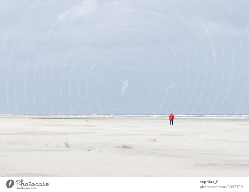 Man by the sea 1 Human being Landscape Horizon Coast Beach North Sea Baltic Sea Ocean Old Red Contentment Power Serene Calm Hope Grief Death Longing Wanderlust