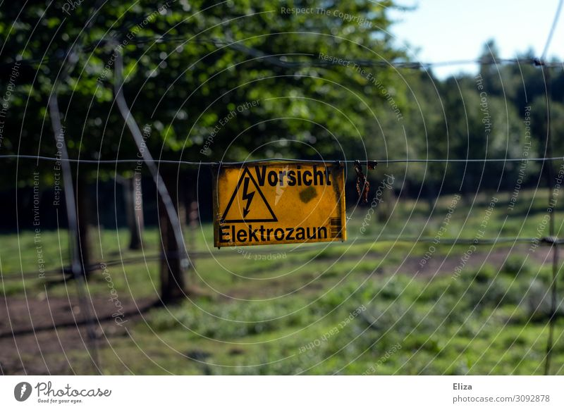 Caution electric fence Sign Characters Signage Warning sign Threat Safety Yellow Electricity Electrified fence Game park Wild animal Nature Tree Fence Dangerous