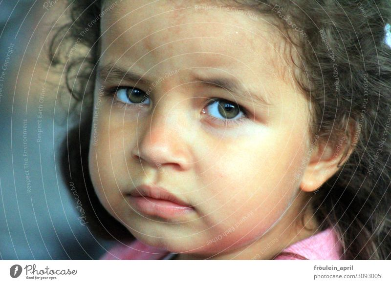What are you thinking? Feminine Child Toddler Girl Head Face 1 Human being 3 - 8 years Infancy Brunette Beautiful Natural Cute Ask Sadness Meditative Sulk