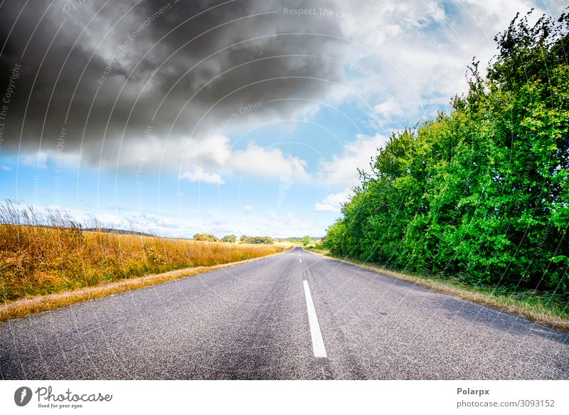 Asphalt road in a rural landscape Vacation & Travel Trip Summer Nature Landscape Sky Clouds Weather Tree Grass Park Meadow Hill Transport Street Highway