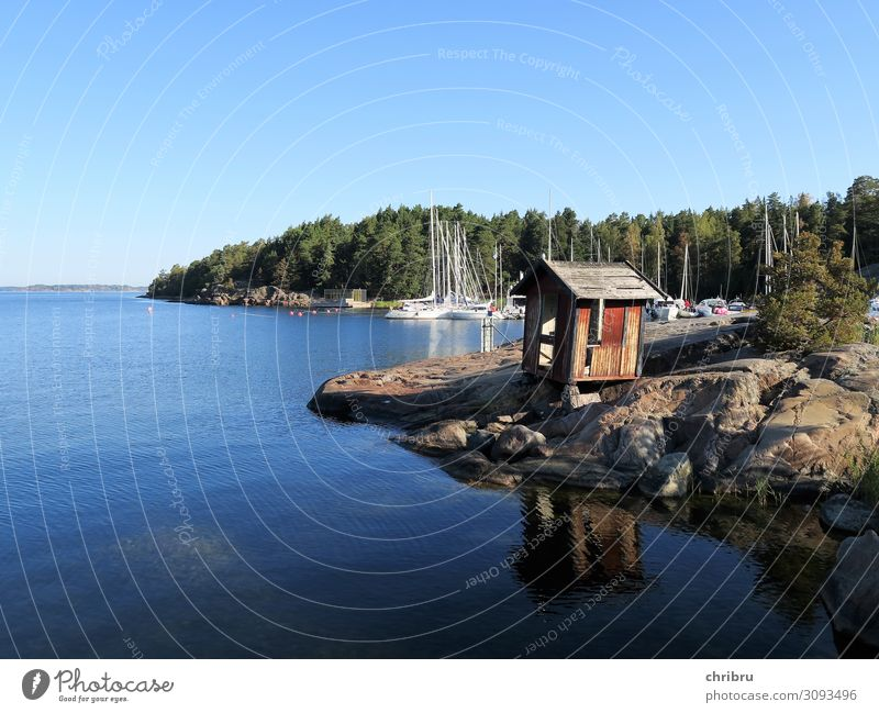 Idyll in the archipelago Summer Ocean Island Nature Landscape Water Beautiful weather Coast Bay Baltic Sea Relaxation Blue Calm Vacation & Travel Peace Skerry