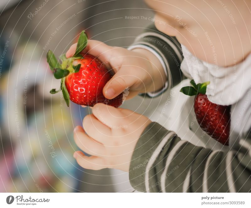 Baby holding red strawberry up in his hand Lifestyle Leisure and hobbies Vacation & Travel Summer Child Family & Relations Infancy Hand Fingers 0 - 12 months