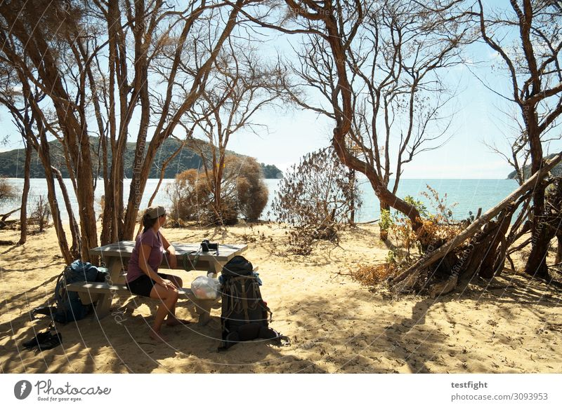 Human being Vacation & Travel Nature Summer Landscape Sun Tree Ocean Far-off places Beach Environment Feminine Tourism Freedom Trip Hiking