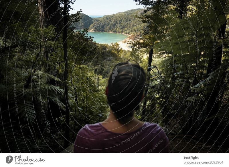 retrospect Vacation & Travel Tourism Adventure Far-off places Hiking Feminine Head Hair and hairstyles Back 1 Human being Environment Nature Landscape Plant