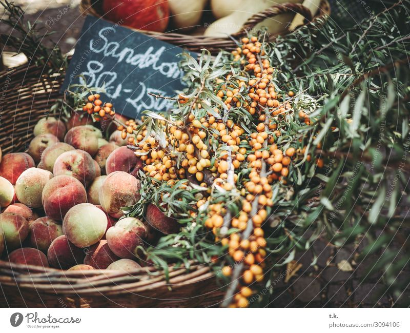 sea buckthorn Food Vegetable Fruit Sallow thorn Nutrition Organic produce Vegetarian diet Shopping Healthy Healthy Eating Summer Autumn Nature Peach Yellow