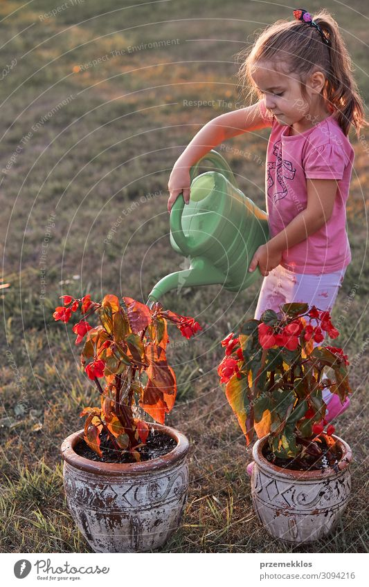 Little girl helping to water the flowers Pot Lifestyle Summer Summer vacation Garden Child Work and employment Gardening Human being Girl 1 3 - 8 years Infancy