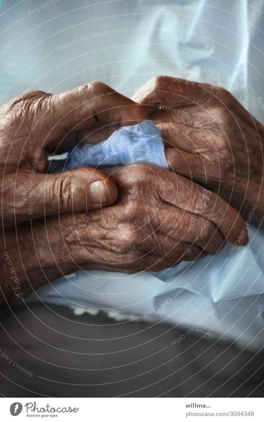 Old Hand Love Senior citizen Emotions Health care Together Warm-heartedness Help Touch Hope To hold on Attachment Belief Trust Partner