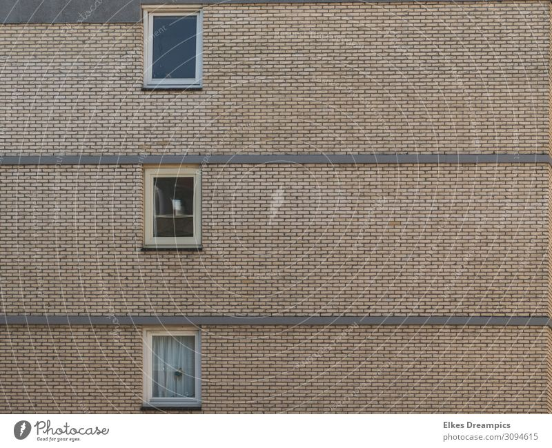windows House (Residential Structure) High-rise Wall (barrier) Wall (building) Window Gray Northwijk Subdued colour Exterior shot Pattern Structures and shapes