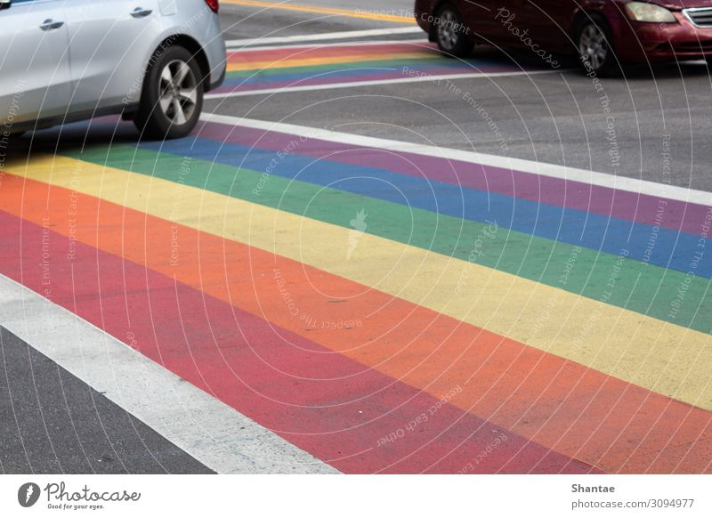 Rainbow Crosswalk for LGBTQ support Town Street Lifestyle Emotions Tourism Freedom Together Car Sex Uniqueness Friendliness Landmark Hip & trendy Relationship