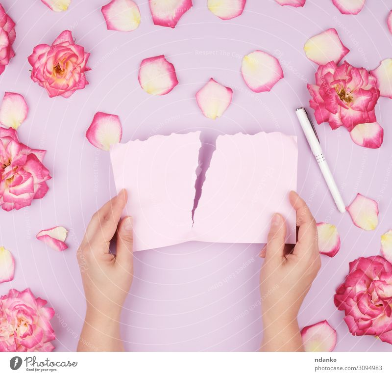two hands hold an empty pink sheet Design Beautiful Summer Decoration Feasts & Celebrations Wedding Birthday Hand Plant Flower Leaf Blossom Paper Pen Love Write