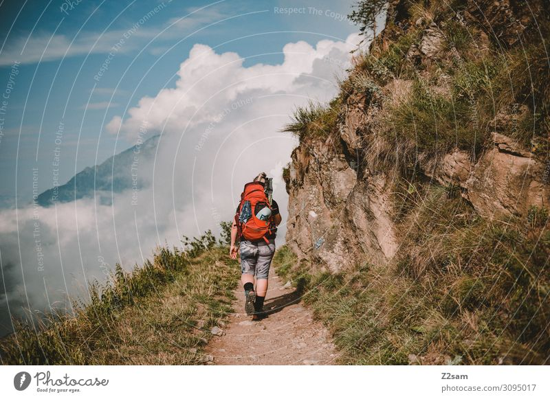 Young woman hiking on the Meraner Höhenweg Leisure and hobbies Vacation & Travel Adventure Freedom Mountain Hiking Youth (Young adults) 18 - 30 years Adults