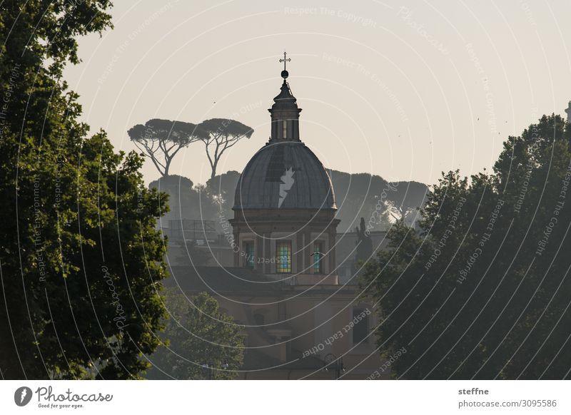 Chiesa di San Girolamo dei Croati Nature Summer Tree Skyline Religion and faith Rome Italian worth living dolce vita Church Domed roof Stone pine green lung
