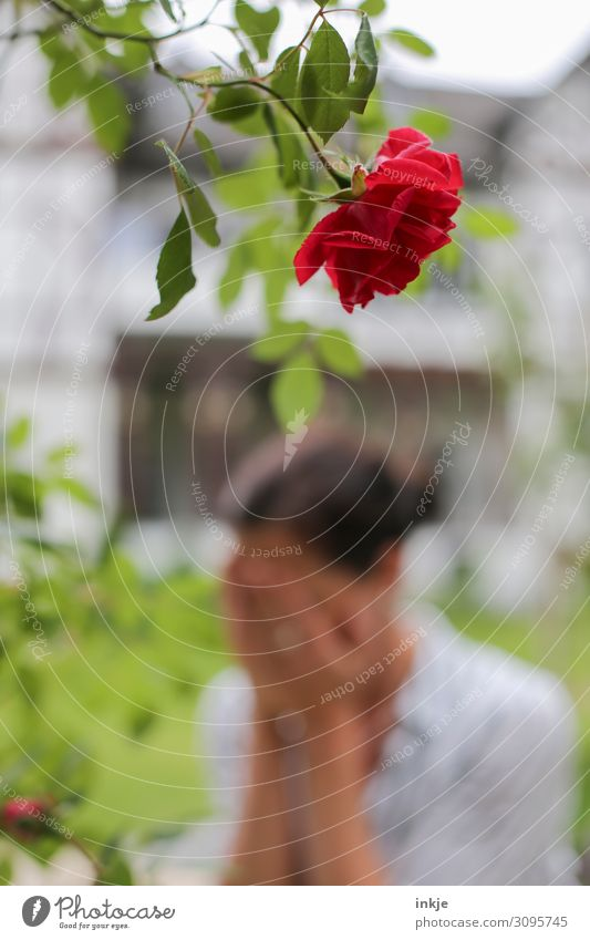 Woman Human being Summer Red Loneliness Adults Life Love Blossom Sadness Emotions Garden Romance Blossoming Grief Rose