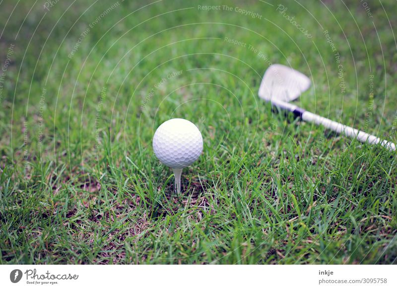 Golf ball on tee Golf club Tee off Golf course Meadow Near Green White Colour photo Subdued colour Exterior shot Close-up Deserted Day Light Contrast