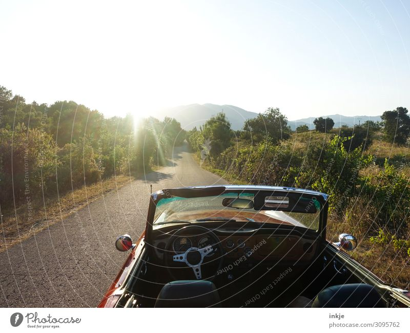 Corsica Lifestyle Luxury Vacation & Travel Trip Summer Summer vacation Sun Motoring Beautiful weather Deserted Street Country road Car Convertible Authentic